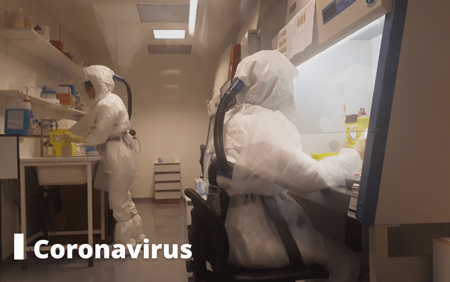 coronavirus dossier pasteur lille