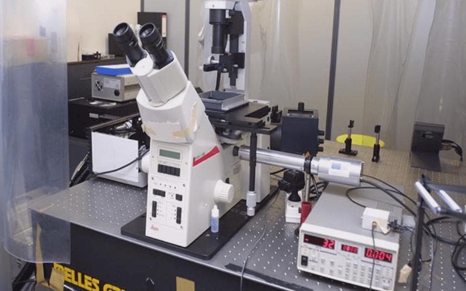 cytométrie cellulaire pasteur lille