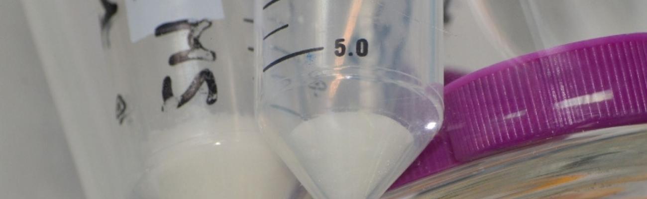plateforme chimie des peptides